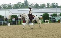 Verdiana 2013 Dressur in der Working Equitation